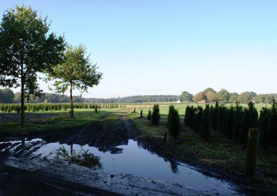 2017-10-14-wicherumloop-81